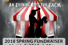 2018 Spring Fund Raiser
